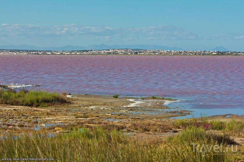 Розовое озеро Торревьехи / Испания