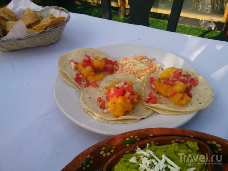 Такос, фахитос, начос, буритос и прочие вкусности Мексики / Мексика