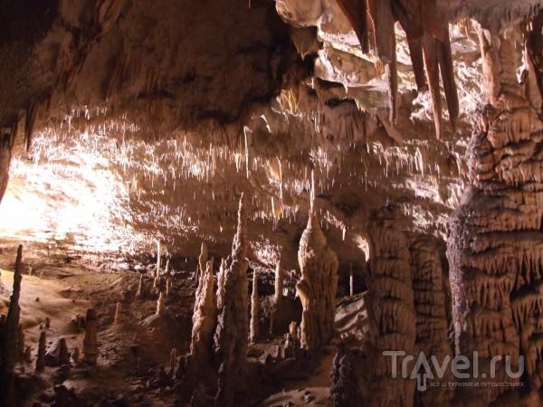 Словения туристическая и Адриатическая. Постойнская пещера и Пиран / Словения