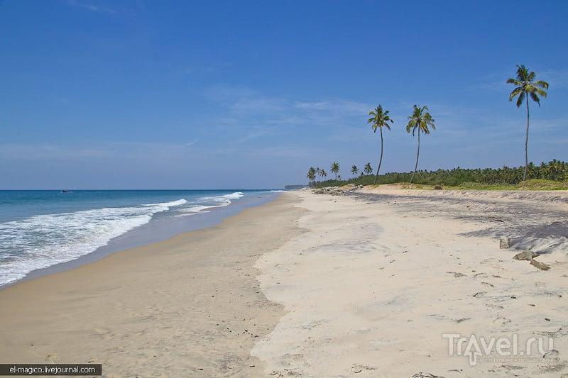 на пляже Каппил, Индия / Фото из Индии