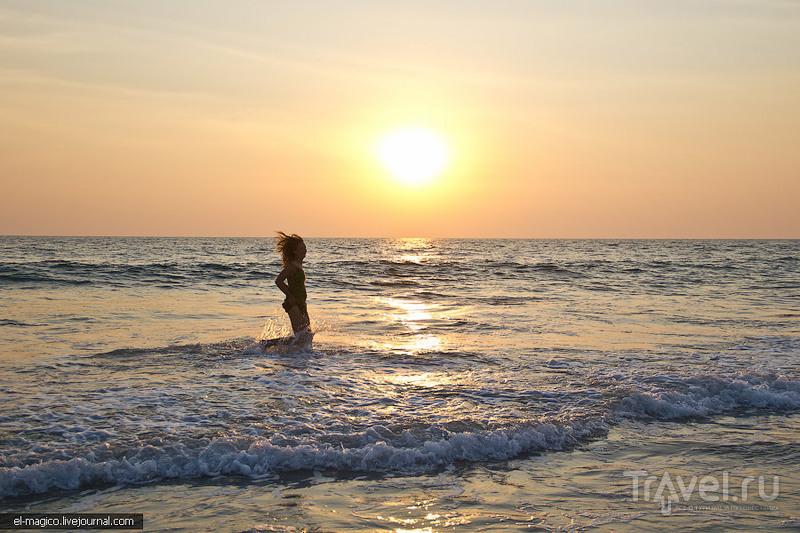 Дикий пляж Каппил, как сбивают кокосы без подручных предметов и волшебные закаты / Фото из Индии