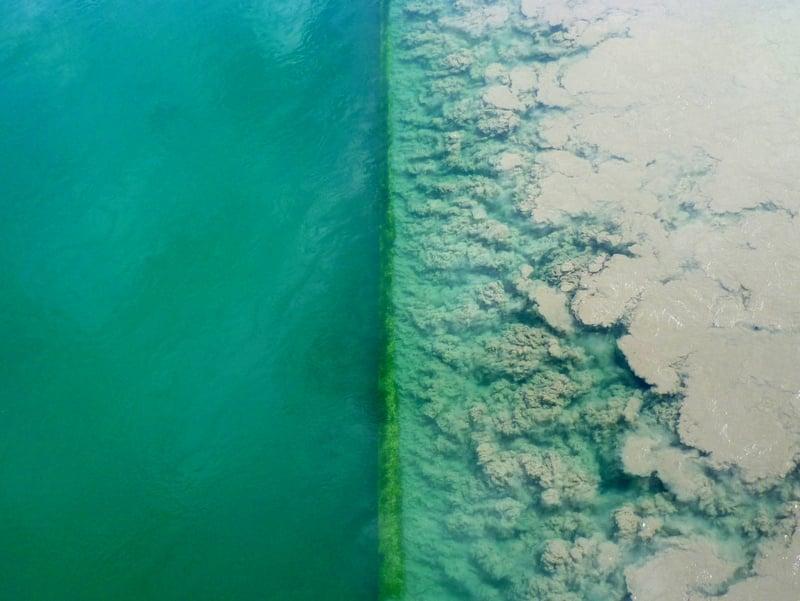 Контрастные воды рек Рона и Арв, Швейцария / Швейцария
