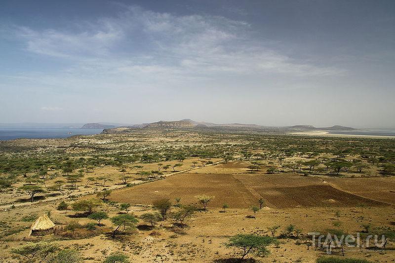 В национальном парке Абиата-Шала, Эфиопия / Фото из Эфиопии