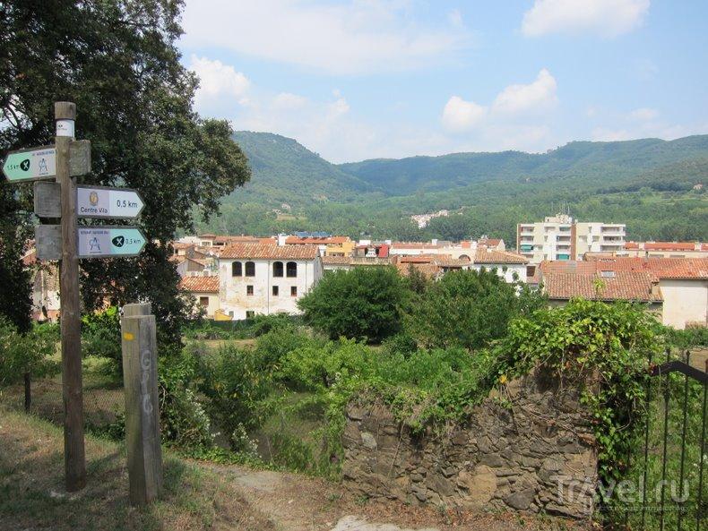 На велосипеде по зелёным дорогам Каталонии / Фото из Испании