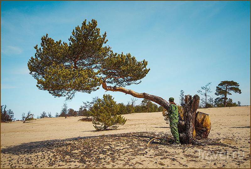 Ольхон, чудо-остров / Фото из России