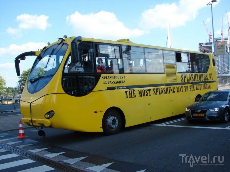Роттердам, или последний день в Голландии / Нидерланды
