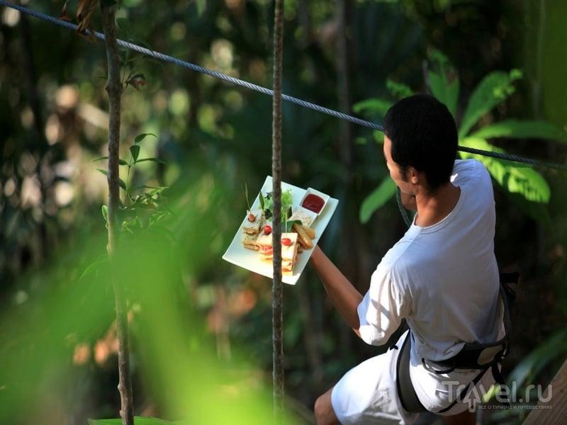 В меню ресторана Treepod Dining - только экологически чистые продукты, Таиланд / Таиланд