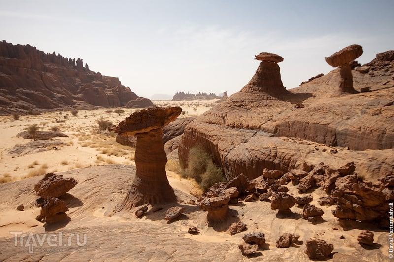 В пустыне Сахара, Чад / Фото из Чада