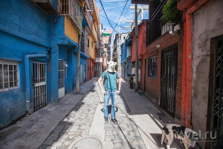 В Буэнос-Айресе, Аргентина / Фото из Аргентины