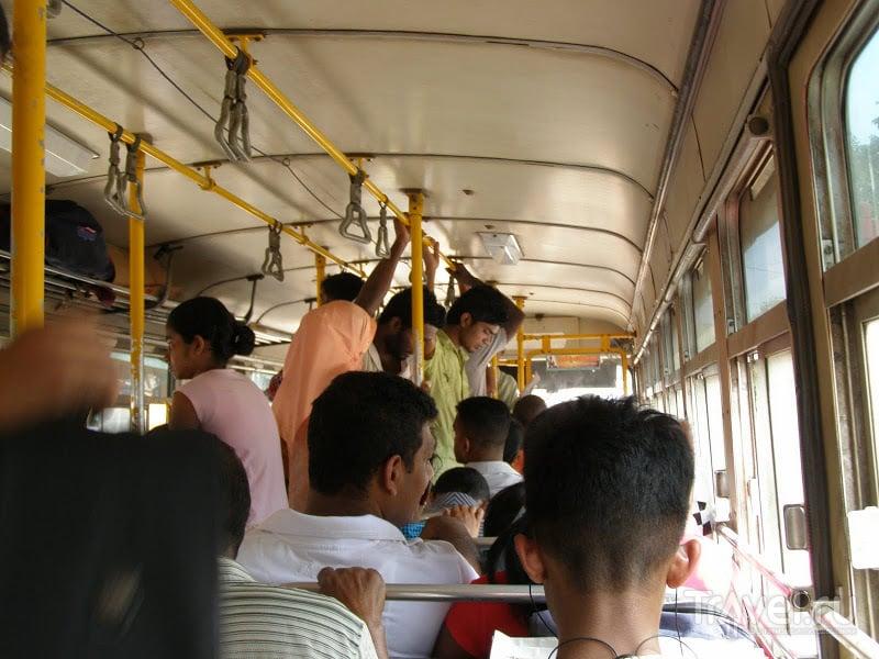 По дорогам Шри-Ланки / Шри-Ланка
