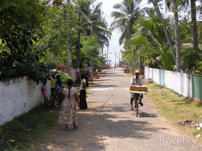 В городе Ваддува, Шри-Ланка / Фото со Шри-Ланки