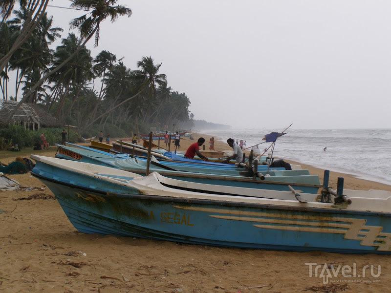 Шри-Ланка. Ваддува / Фото со Шри-Ланки