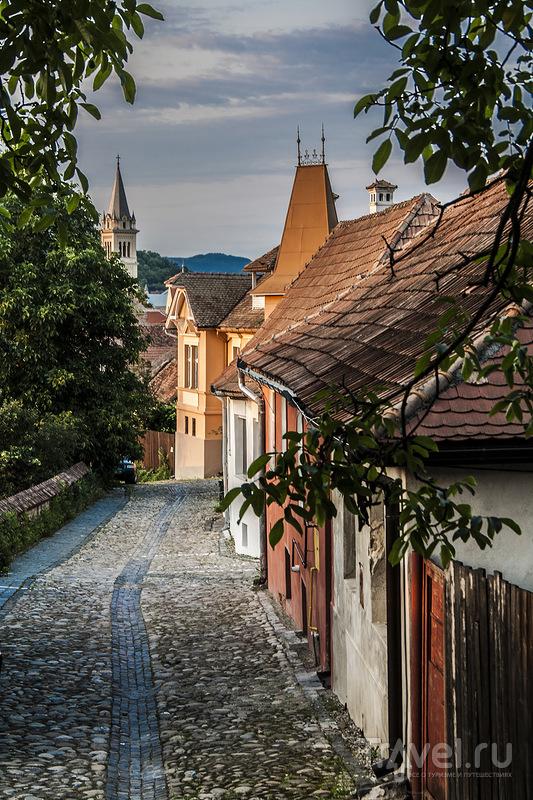 Трансильвания трип. Сигишоара / Фото из Румынии