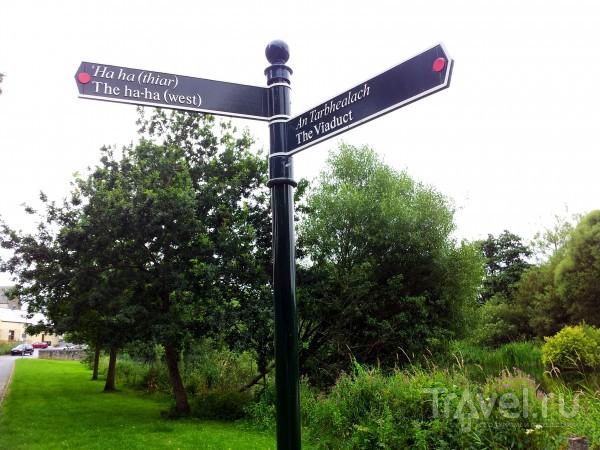 Прогулка по ирландскому городку Кейр (Cahir) / Ирландия