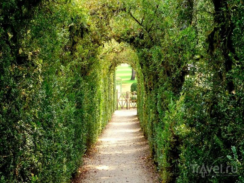 Расположенные на юго-западе Франции сады Маркесак (Les Jardins de Marqueyssac) / Франция