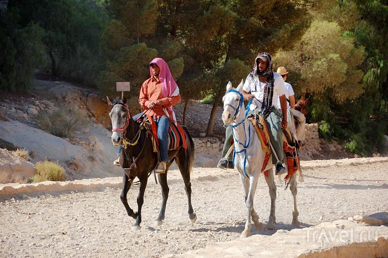 Петра - это даже круче, чем Мачу-Пикчу / Фото из Иордании