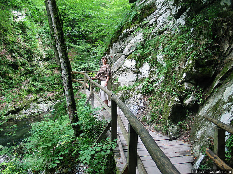 Каньон Винтгар у озера Блед / Словения