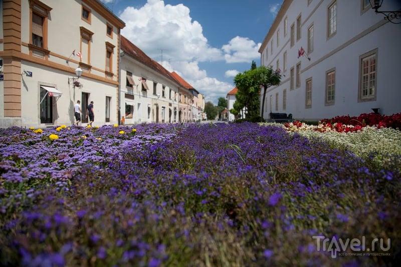 В городе Вараждин, Хорватия / Фото из Хорватии