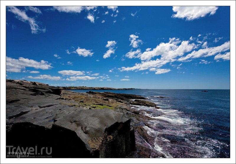 Schoodic Peninsula в штате Мэн, США / Фото из США