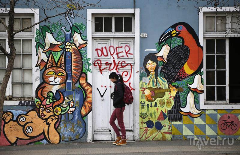 Мурали Сантьяго: настенное творчество чилийской столицы / Фото из Чили