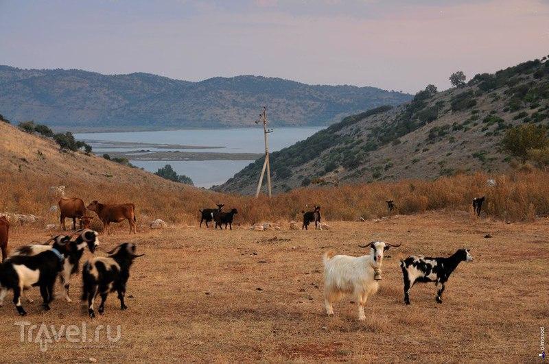 Албания, природа и пляжи / Фото из Албании