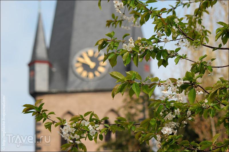 Весенний Дюссельдорф / Германия