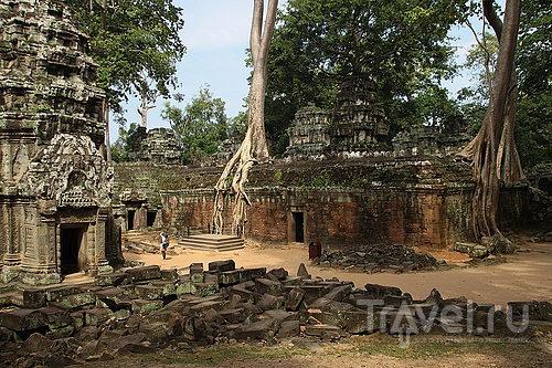 Храм Та-Пром, Камбоджа / Фото из Камбоджи