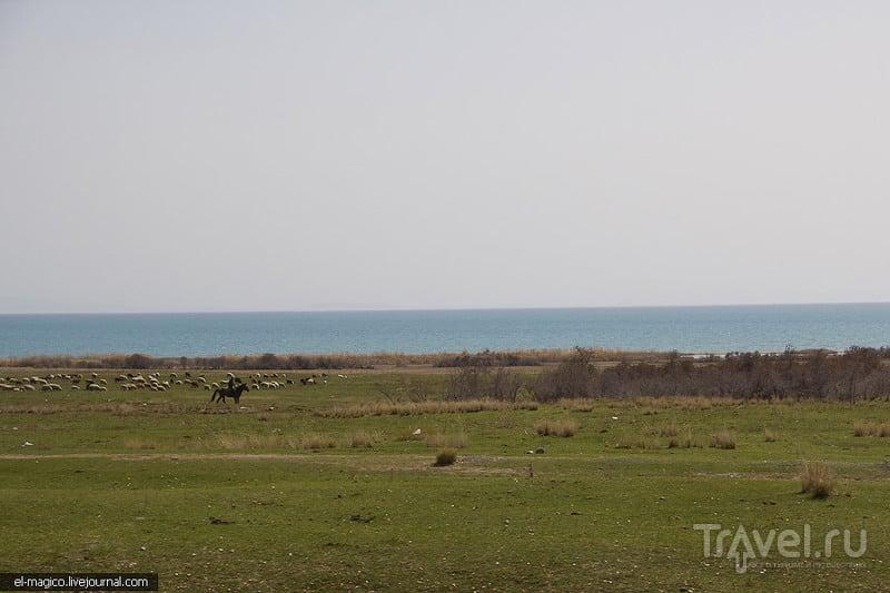 Озеро Иссык-Куль, Киргизия / Фото из Киргизии