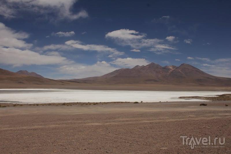 Альтиплано - одно из красивейших мест Южной Америки / Фото из Боливии