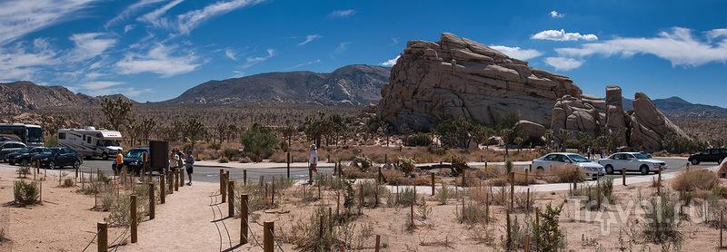"""Парк """"Джошуа-Три"""": Спрятанная долина / Фото из США"""