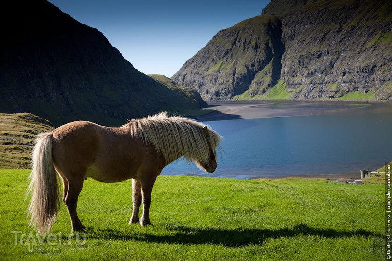 Фарерские острова: Торсхавн, Стреймой / Фото из Дании