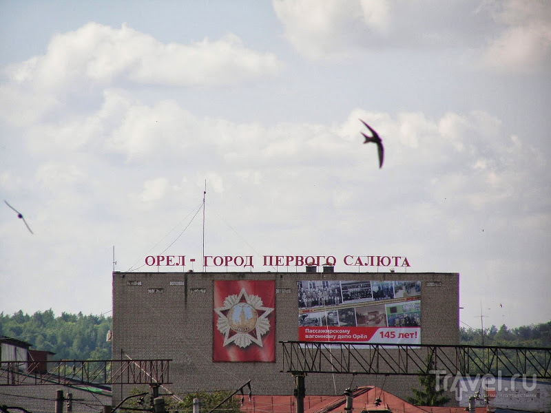 Орел / Россия