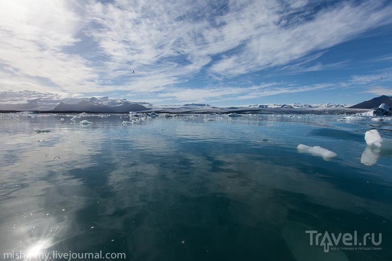 Путешествие в Исландию: ледниковая лагуна Йокульсаарлон / Фото из Исландии