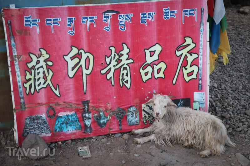 На внедорожниках в Тибет. Дарчен / Китай