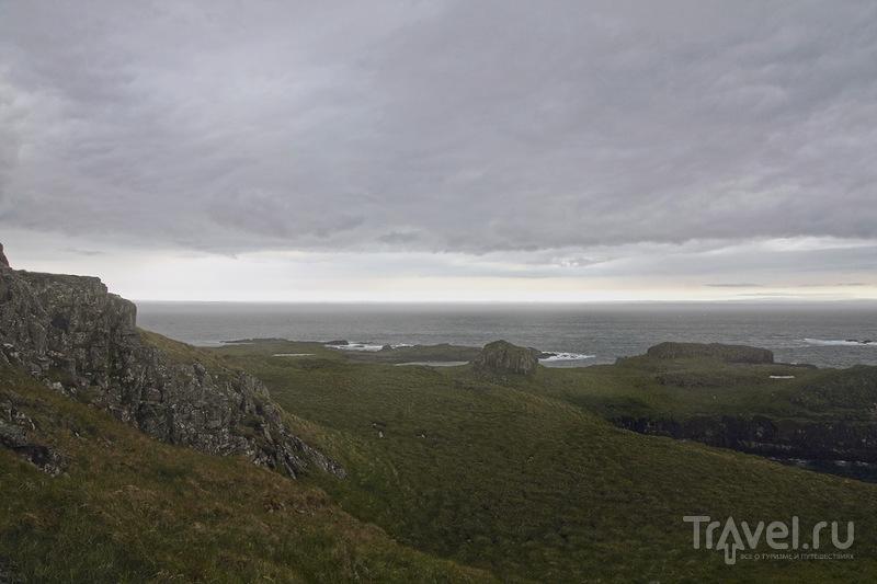 Птичье царство - остров Папей / Фото из Исландии