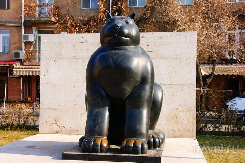 Кошка / Армения