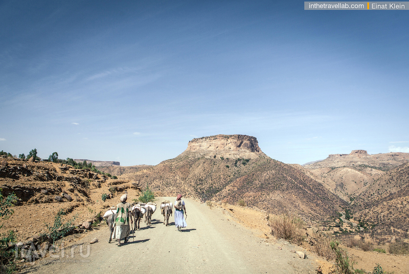 Как покорить стены монастыря Дебре Дамо / Эфиопия