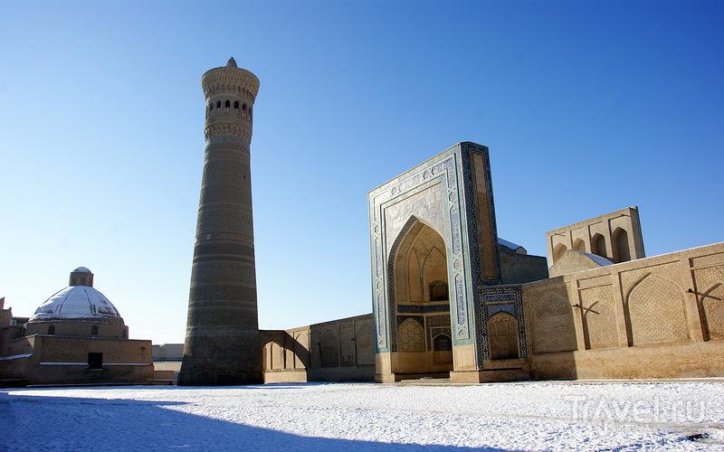 В городе Бухара, Узбекистан / Фото из Узбекистана