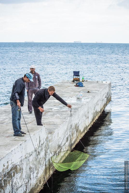 Одесса. Дельфинарий Немо и сказочный тоннель / Фото с Украины
