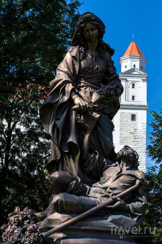 Памятник святой  Альжбете в  Братиславе, Словакия / Фото из Словакии