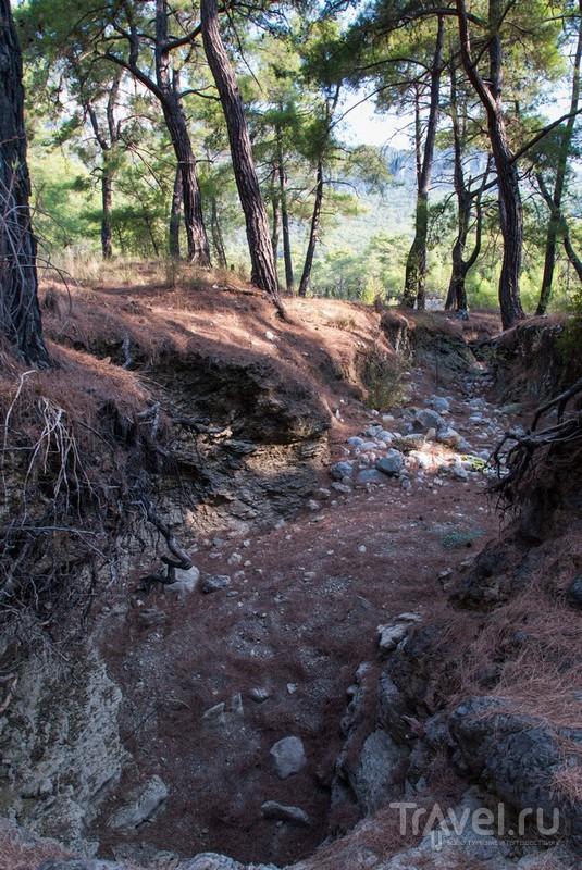 Тавры. Прогулка по ущелью / Турция