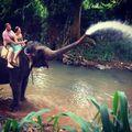 Слон-фонтан / Шри-Ланка