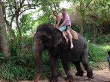 Катание на слонах / Шри-Ланка