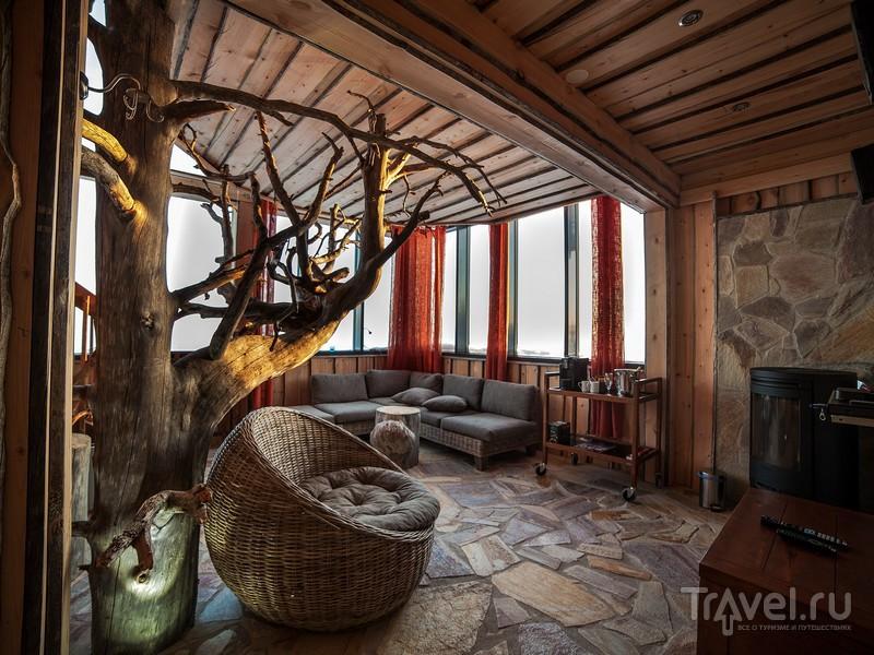Вокруг ствола дерева в Eagle's View Suite, растущего в окружении диванов и кресел, обвивается винтовая лестница, Финляндия / Финляндия