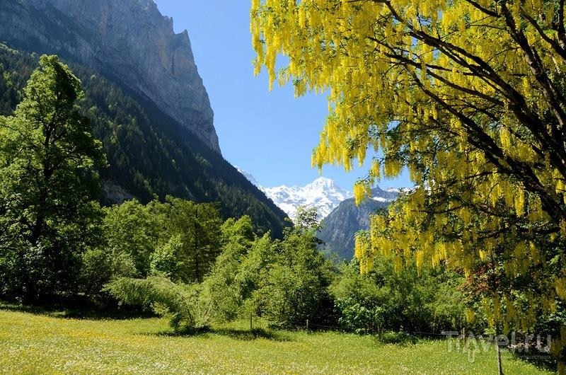 Лаутербруннен, перевалы и немного Лугано / Фото из Швейцарии