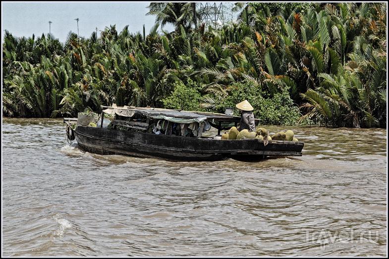Вьетнам. Дельта Меконга / Фото из Вьетнама