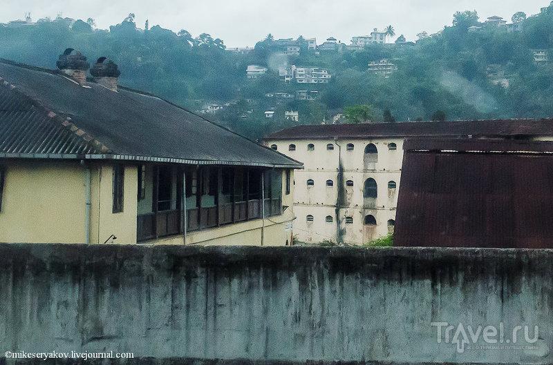 Последняя королевская столица и самая священная реликвия буддизма / Шри-Ланка