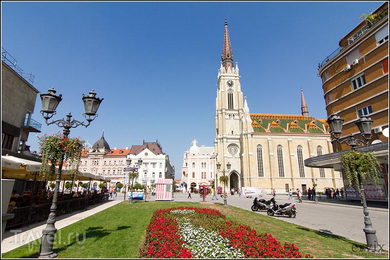 Церковь Богородицы в городе Нови-Сад, Сербия / Фото из Сербии