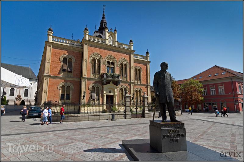 Здание Владичански Двор и памятник Йовану Йовановичу  в городе Нови-Сад, Сербия / Фото из Сербии