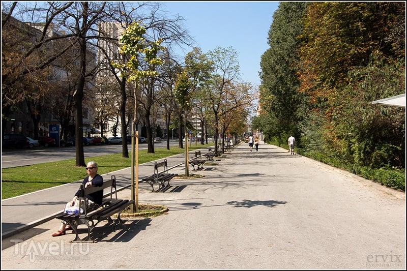 Бульвар Михаила Пупина в городе Нови-Сад, Сербия / Фото из Сербии